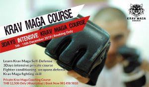Krav Maga Intensive Course